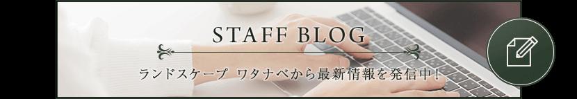 blog_bannar_single